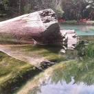imagem de Igarapé-Açu Pará n-3