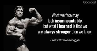 Arnold Schwarzenegger Quotes Extraordinary Top 48 Arnold Schwarzenegger Quotes To Pump You Up For Success