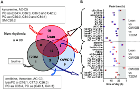 Aaa 2 Venn Diagram Metabolites With A Significant Cosine Rhythm In The 3 Study