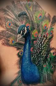 что обозначает тату птицы на руке какой смысл и значение татуировки