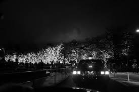 Japan street light black monochrome night reflection photography evening  moonlight dusk Leica Tokyo midnight Jp light