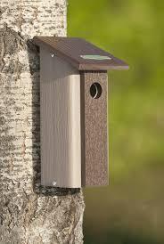 Birdhouse Duncraftcom Duncraft Downy Woodpecker Bird House