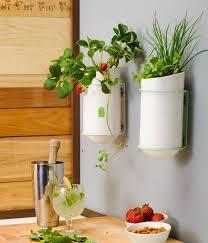 unique kitchen wall décor ideas