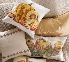 Pottery Barn Fall Pumpkin Pillow Cover $18.99 FS (reg. $45.50)
