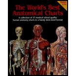 World S Best Anatomical Charts Worlds Best Anatomical Charts A Collection Of 37 Medical