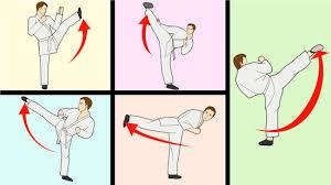 teach yourself the basics of karate