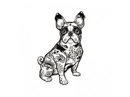 Voděodolné Dočasné Tetování Motiv Pes