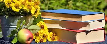 Resultat d'imatges de libros