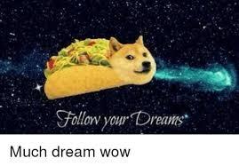 doge follow your dreams. Unique Follow Doge Wow And Dreams Follow Your Dreams Much Dream Wow Throughout Doge Your O