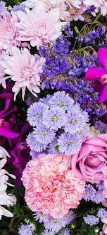 Colorful Flowers iPhone Wallpapers ...