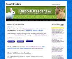 Resume Rabbit Price
