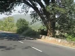 Deoghar To Rajgir Road Side Views By Amit Dutta Banpur