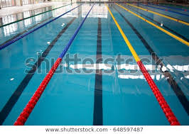 olympic swimming pool lanes olympic swimming pool lane markers olympic lanes y