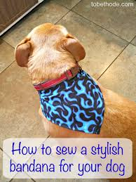 show your love with nutrition style how to sew a dog bandana