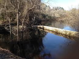 Suwannee River Mileage Trip Agenda Ideas Life At 60 Mph