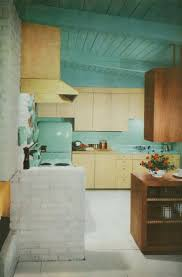 Design My Dream Kitchen 17 Best Images About My Dream Kitchens On Pinterest Mid Century