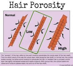 moisturizing fine low porosity hair