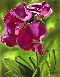 sweet pea painting sun and the sweet peas by sandi howell