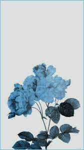 Blue Aesthetic Flower Wallpapers - Top ...