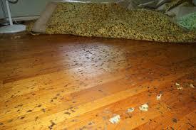 latex backed rugs. Rubber Backed Rugs On Hardwood Floors Imposing Back Home Design Ideas Interior 3 Latex