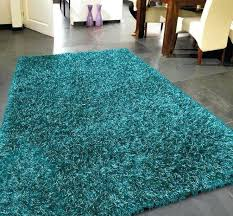 teal accent rug