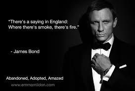 James Bond Quotes Gorgeous 48 James Bond Quotes 48 QuotePrism