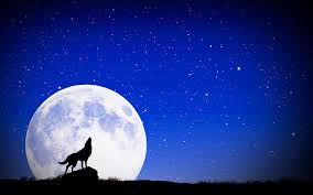 Image result for full moon flower moon