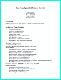 Processing Clerk Sample Resume Data Entry Resume Skills Examples Sugarflesh 17