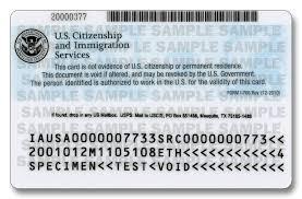 Mexican Customs Ice Immigration Greencard Id Citizenship RaT1wHTq