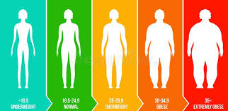 Body Scale Chart Creative Vector Illustration Of Bmi Body Mass Index