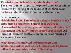 feminist essay  feminist essay