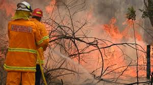 Image result for Ring of fire: Australian state declares emergency as wildfires approach Sydney