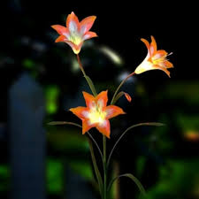 1000 images about yard lights on pinterest solar flower lights and solar led amazing garden lighting flower