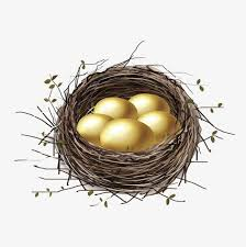 bird nest with eggs clipart. Wonderful Bird Cartoon Bird Nest Golden Egg Cartoon Clipart Bird Egg Clipart  PNG Image On Nest With Eggs N