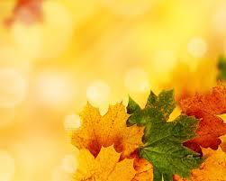 Free Fall Powerpoint Autumn Powerpoint Template Under Fontanacountryinn Com