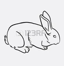 Vettoriale Coniglio Disegno Di Mano Animale Mammifero Attività