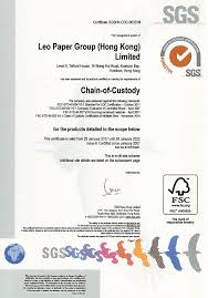 Green Certificates And Awards Leo Paper Group
