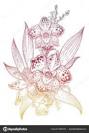 композиция орхидей тропический цветок в руке обращается винтажный