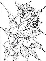 coloring pages flowers for adults 2. Fine Coloring Hawaiian Flower Colouring Pages Page 2 On Coloring Flowers For Adults 2 W