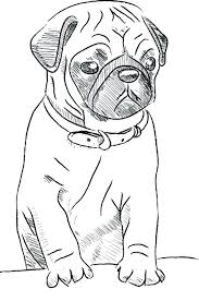 pug coloring pages pug coloring pages pug puppy coloring pages free
