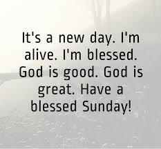 Blessed Sunday Quotes Interesting Beautiful Sunday Quotes WeNeedFun