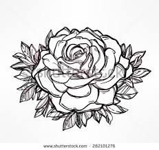 Small Picture Roses And Line Background Download Free Vector Art Stock