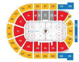 Hand Picked Penguins Seating Chart With Rows 2019