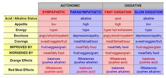Parasympathetic And Sympathetic Chart