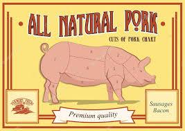 Pork Cuts Diagram Vector Illustration For Your Design