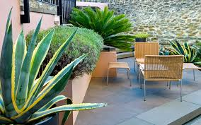 courtyard garden design 65m²