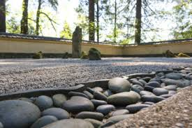 early morning sunlight trickles throughout the sand and stone garden photo by julia taylor