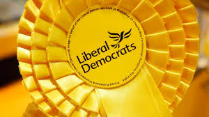 Image result for libdem rosette
