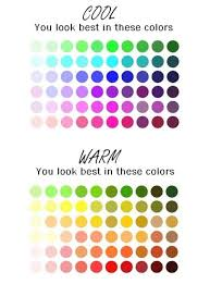 Skin Tone Clothing Chart Cool Warm Skin Tone Colour Chart Important For Hair And