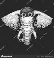 Africký Nebo Indické Slona Ručně Kreslené Ilustrace Pro Tetování
